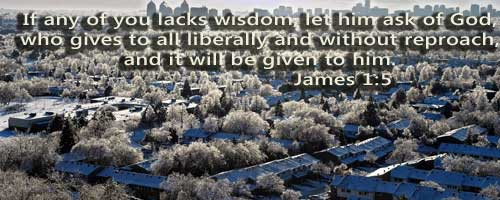 Vision & Advice